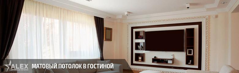 Матовый натяжной потолок в гостиной - от 290 р./м2
