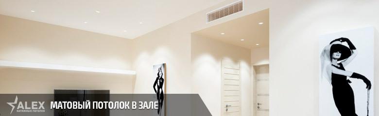 Матовый натяжной потолок в зале - от 290 р./м2